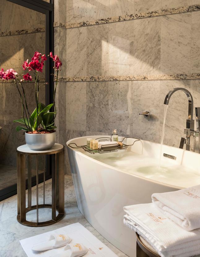 Hotel Marquis tina baño